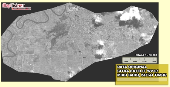 Gambar 1. Data Original Citra Satelit WorldView-1 Area Miau Baru, Kutai Timur