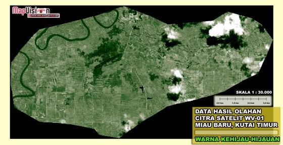 Gambar 3. Hasil Penajaman Kontras Warna serta Perubahan Warna (Dari Hitam-Putih ke Warna Kehijau-hijauan) dari Data Original Citra Satelit WorldView-1 Area Miau Baru, Kutai Timur