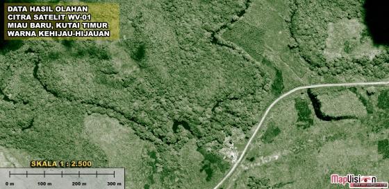Gambar 5. Data Hasil Olahan Citra Satelit WorldView-1 Warna Kehijau-hijauan  Area Miau Baru, Kutai Timur Skala 1 : 2.500