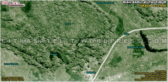 Gambar 5. Data Citra Satelit WorldView-1 Warna Kehijau-hijauan Hasil Enhance Wilayah Miau Baru - Kutai Timur Pada Skala 1 : 2.000 (Klik Pada Gambar Untuk Melihat Gambar Dalam Ukuran Sebenarnya)